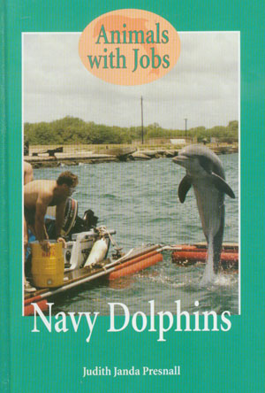 Navy Dolphins